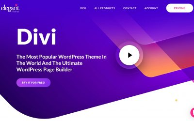 WordPress Divi Designers – The Benefits You Need To Know