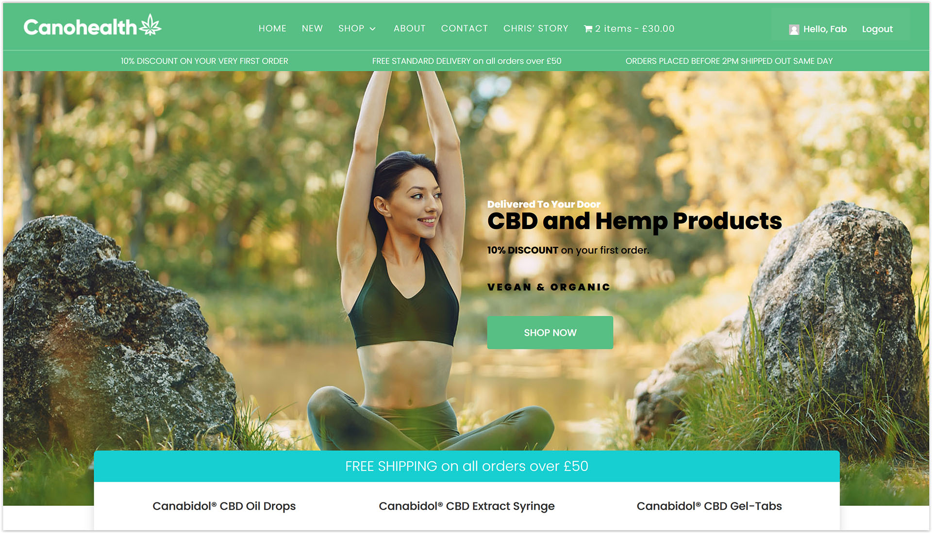 Divi eCommerce – Our Best eCommerce Design Layout (2020) Tiger Digital Web Design